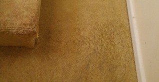 Boiler Stains in Carpet