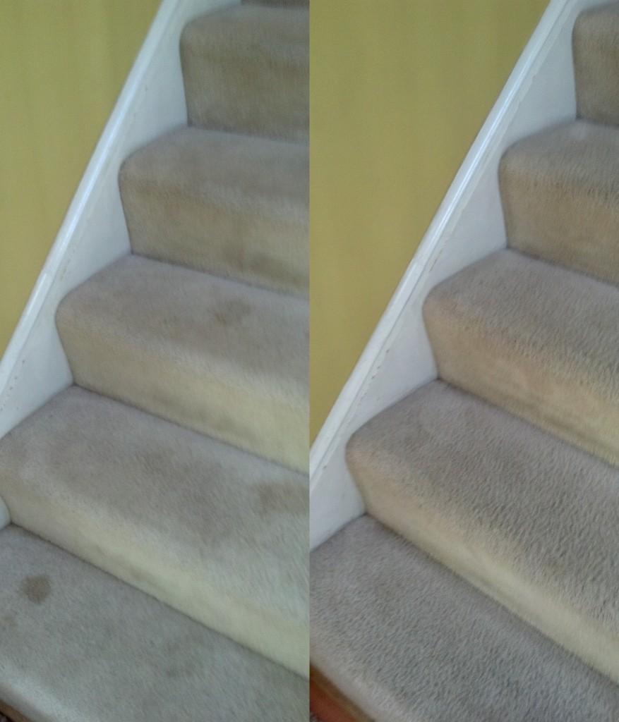 How do you get dog pee stains off of a berber carpet?
