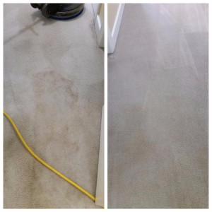Dirty carpet in hallway before and after